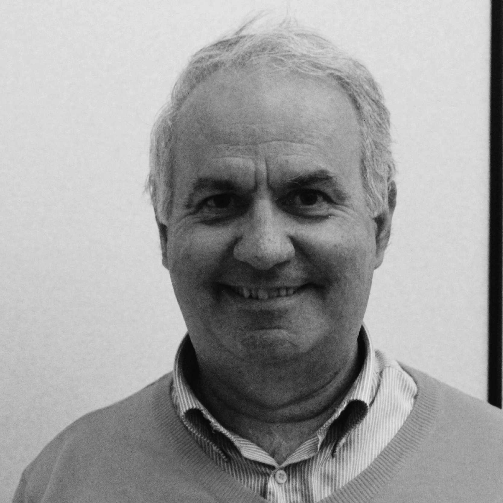 Ing. Luciano Pecori
